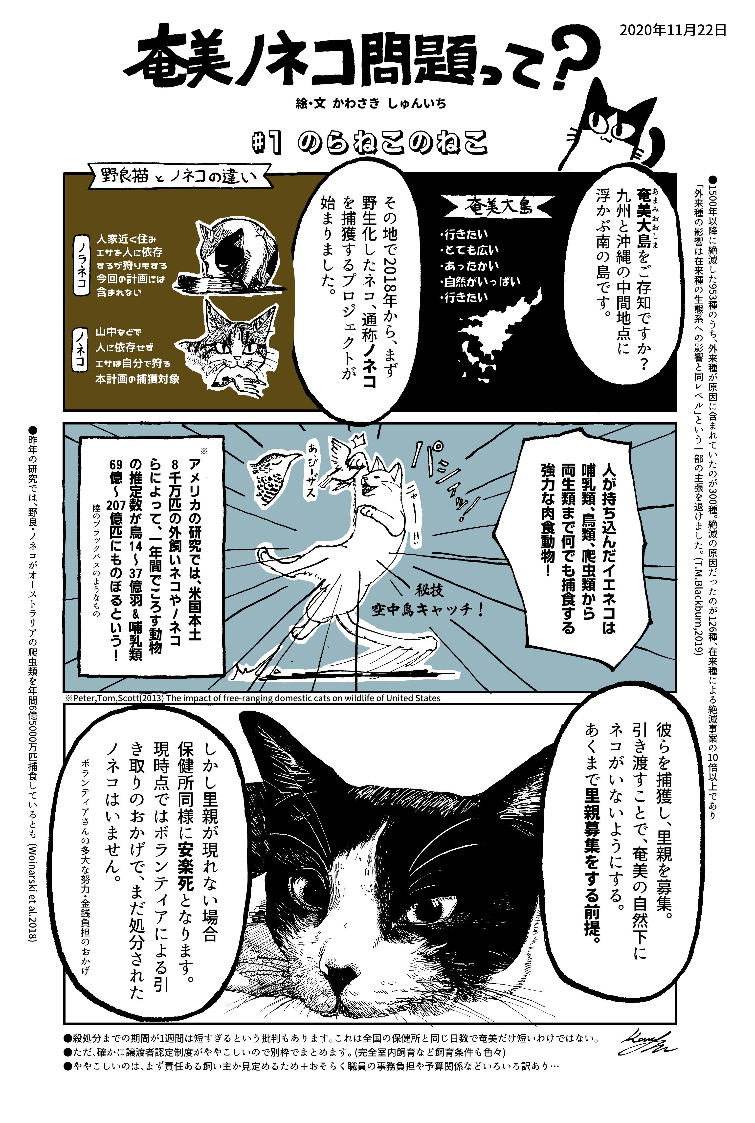 ネタバレ 黒 猫 インフェクション
